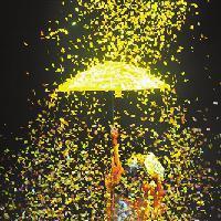 淋雨看花都