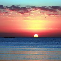 暖了艳阳蓝了海