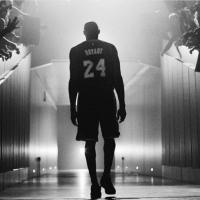 鱼谈NBA