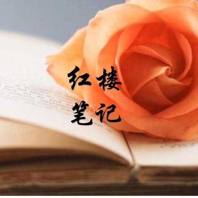 润杨的红楼笔记