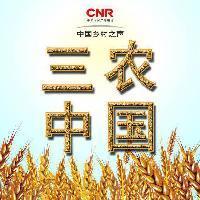 乡村之声三农中国