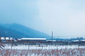 东北一个少有人知的雪乡老白山,有你想要的纯白世界
