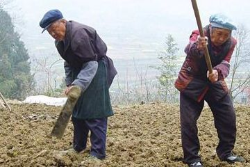 2019年,国家要求农民工实行实名制!在工地上班的优先进行