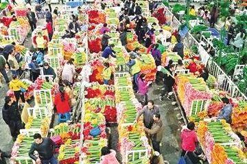 """2017年销售额1533亿花卉离""""日常消费品""""有多远"""
