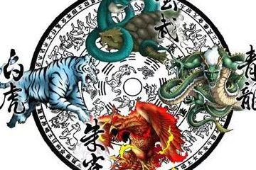 左青龙,右白虎,前朱雀,后玄武,那中间是啥?