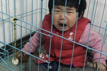 原创             广州潮州亲生父亲虐童。父亲一打小女孩,母亲就报警,最后批评教育不了了之