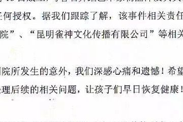 杨丽萍公司声明与漳州舞台坍塌主办方无关,并未授权!称感到心痛