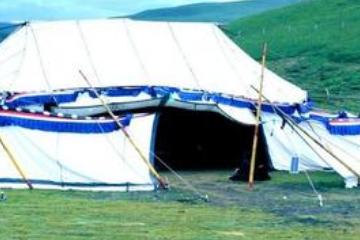 藏区的白色帐篷,男游客最好别走进去,不然单身生活就没了