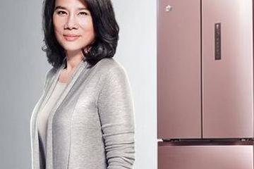 """格力""""价格战""""从空调扩大到冰箱:一台降2000元,冰箱业务净利贡献仅2%"""