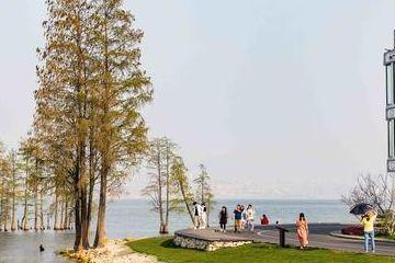 大理旅游可以去下龙龕码头,洱海边的宁静致远,让游客狂喜地转角